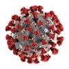 Platform 1: Coronavirus Update